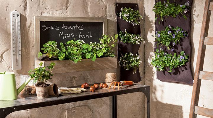 D co cuisine plantes for Quel taux d humidite dans une chambre de bebe