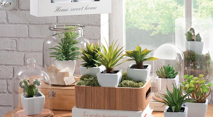 les bonnes id es pour utiliser les plantes dans la d coration. Black Bedroom Furniture Sets. Home Design Ideas