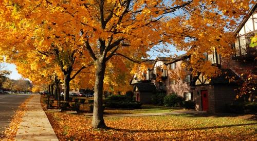 Blog La Foir'Fouille - Conseils pour bien préparer la maison pour l'automne