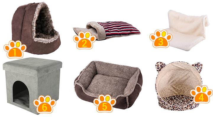 Conseil pour bien accueillir un chat - Le Blog de la Foir'Fouille