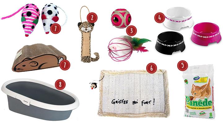 Tout pour Partir en vacances avec son chat - Conseil blog La Foir'Fouille