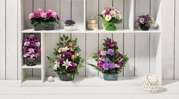 Conseils: Quelles fleurs de Toussaint choisir?