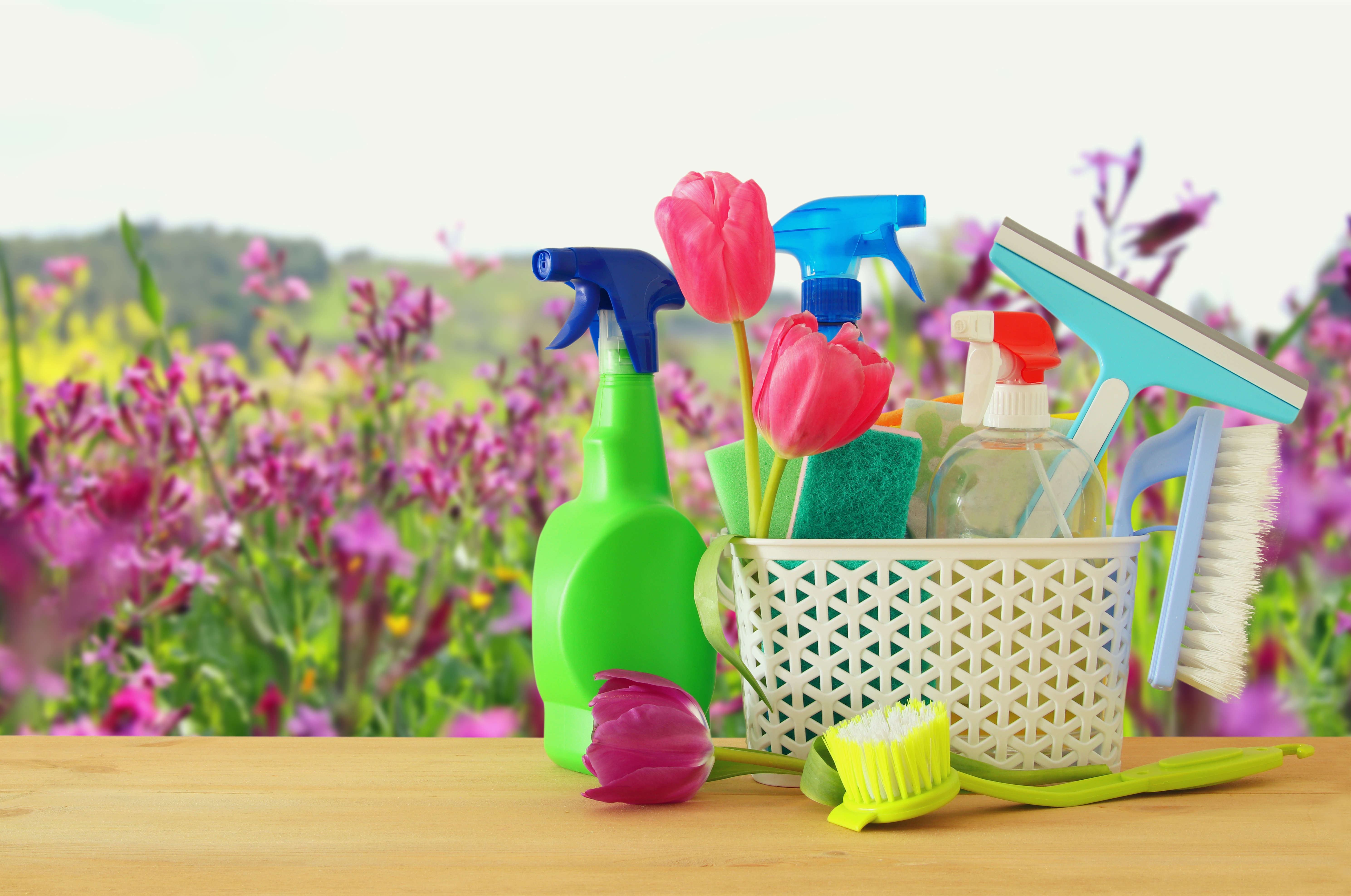 4 produits naturels pour le grand ménage de printemps - Conseils - Blog La Foir'Fouille