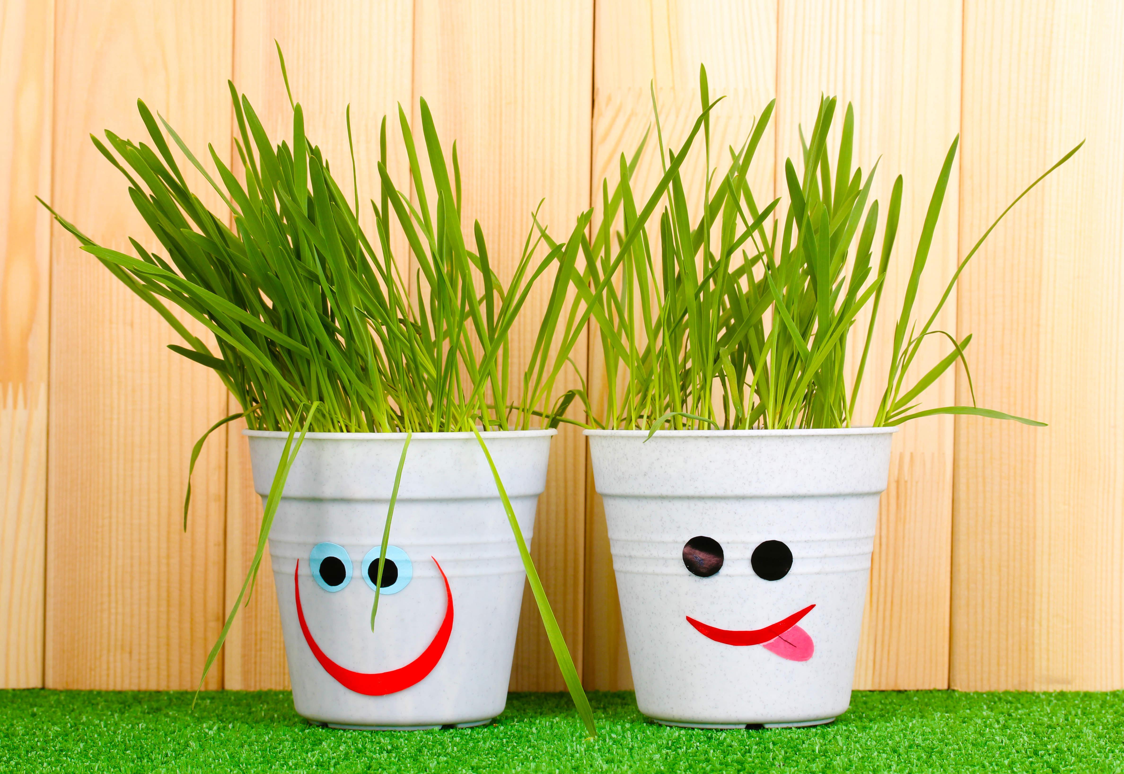 Blog La Foir'Fouille - DIY - 4 idées pour relooker un pot de fleurs