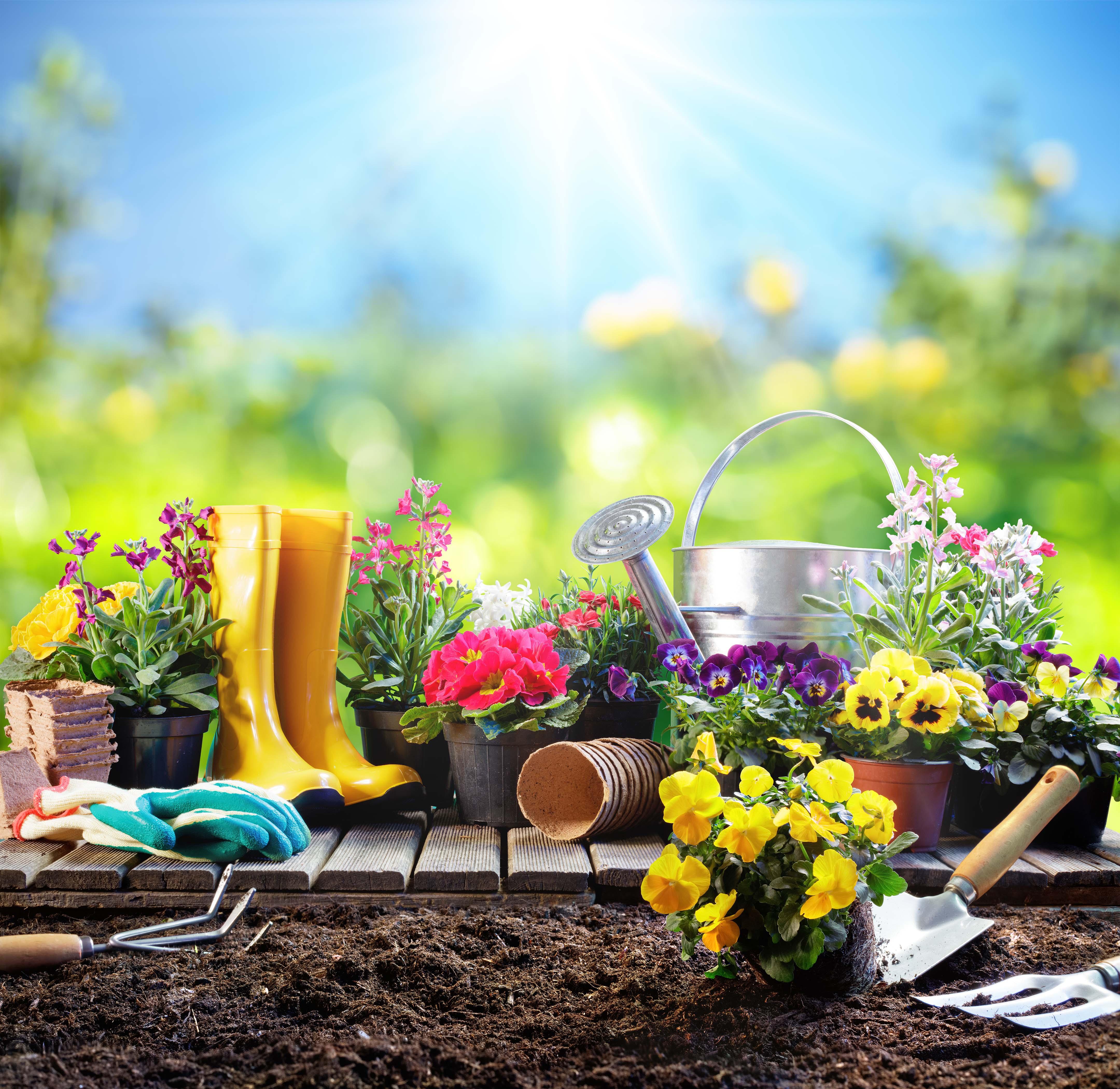 Outils - Conseils - Les essentiels de jardinage