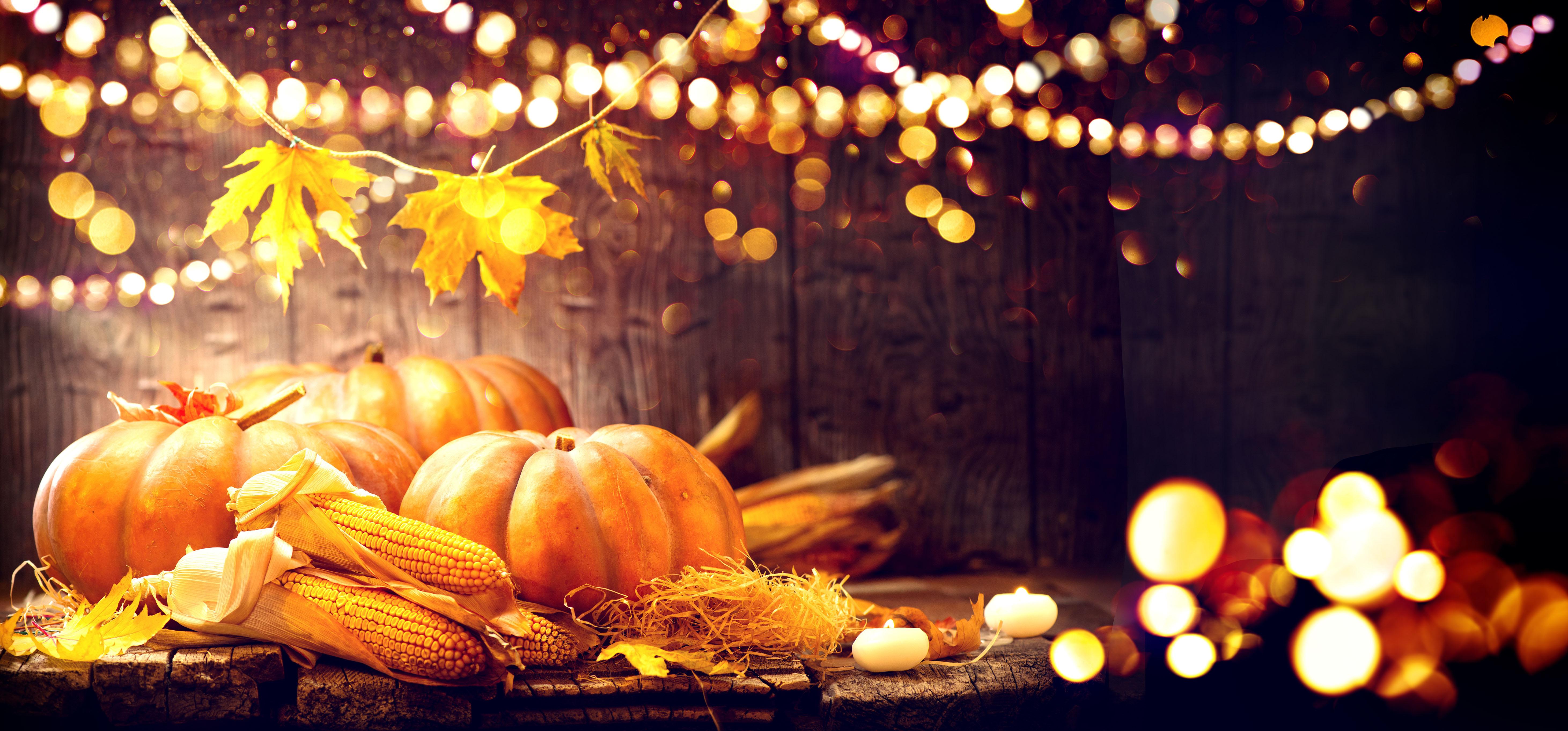 Décorations tendance pour vos citrouilles d'Halloween - DIY - Citrouilles non taillées