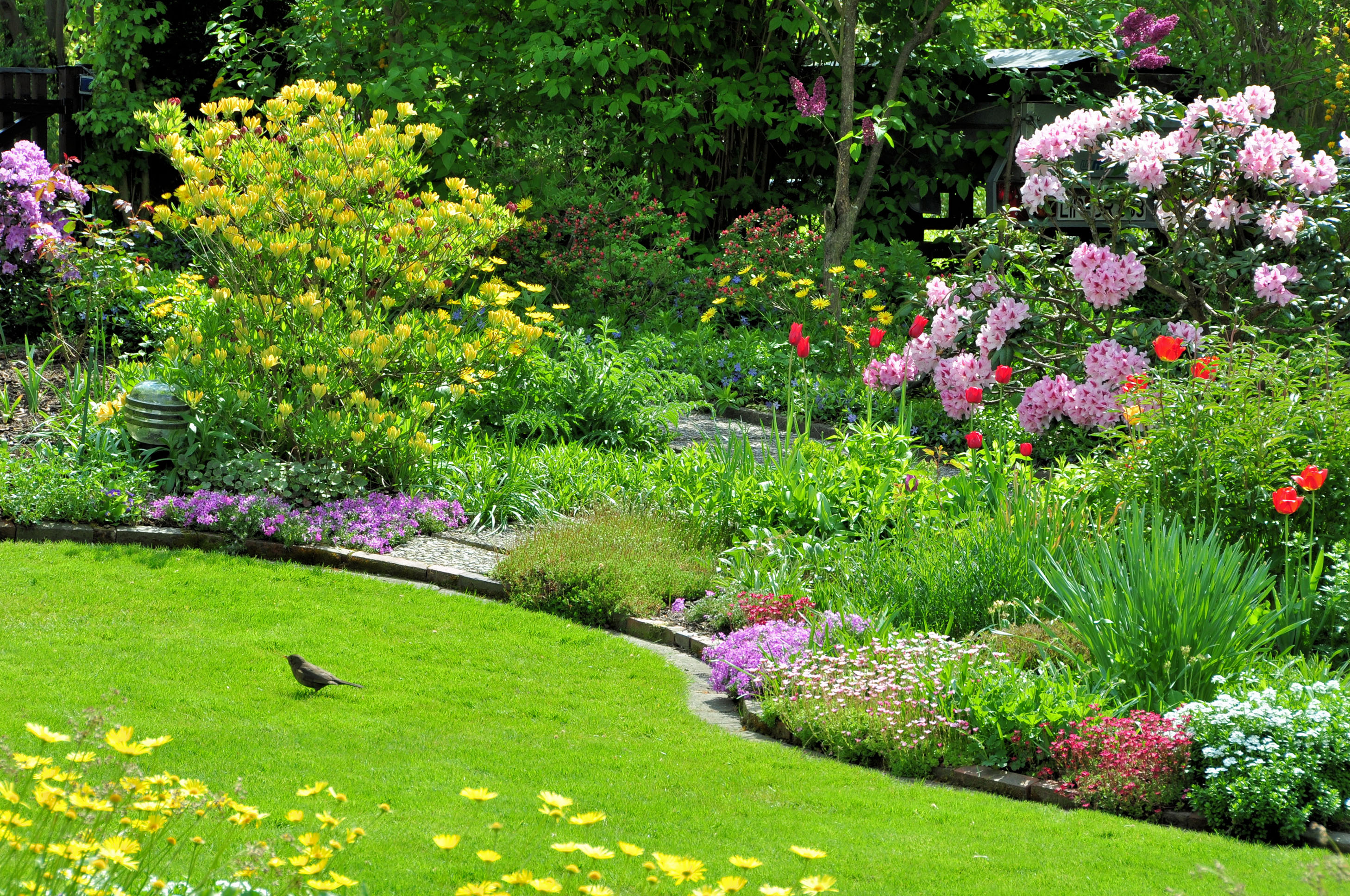 Jardin - Conseils - Les essentiels de jardinage