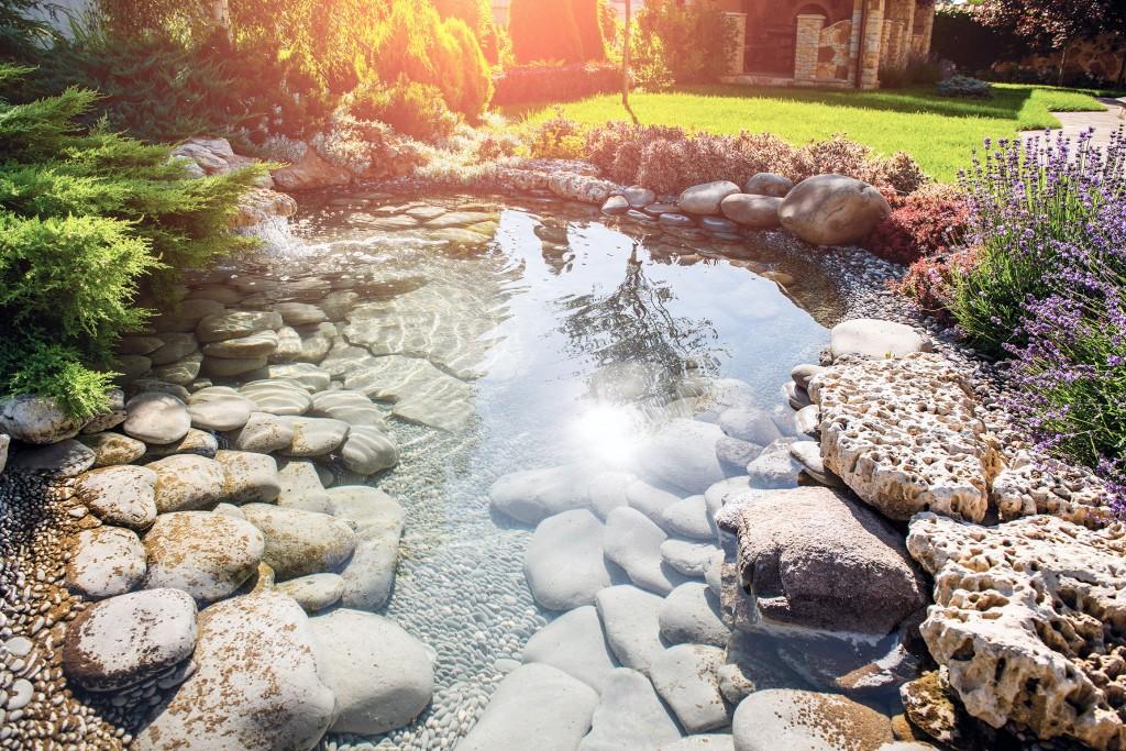 Conseils - Aménager sa mare de jardin - Sun on water
