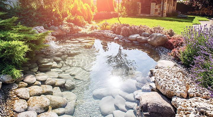 Conseils - Sun on water - Aménager sa mare de jardin