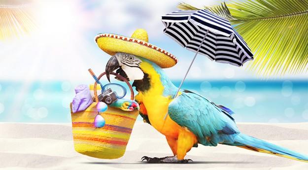On adore : Ces 5 accessoires qui révolutionnent la plage !