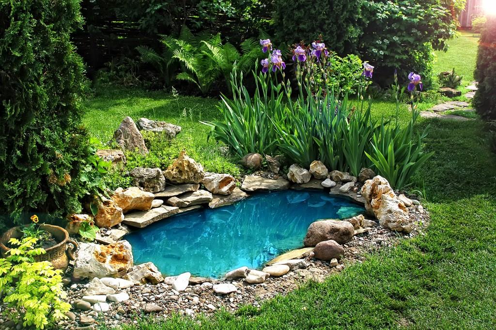 Heavenly mare - Conseils - Aménager sa mare de jardin