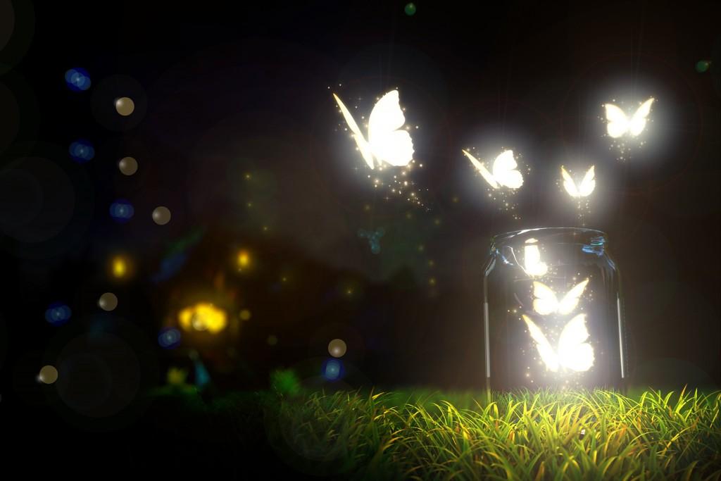 Conseils - Illuminer votre extérieur - Papillons de lumière
