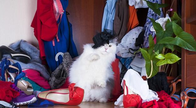 On adore : Les armoires à chaussures de demain… dès aujourd'hui !