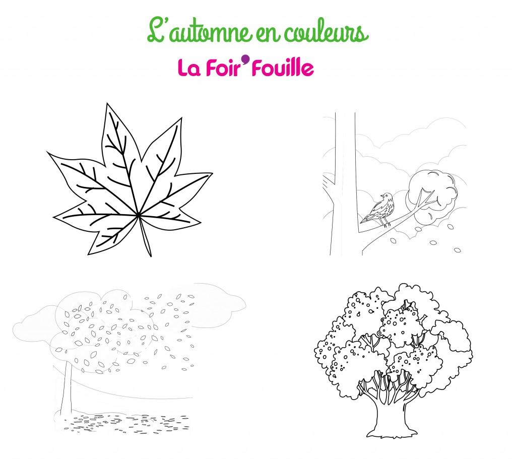 DIY - L'Automne en couleurs - 4 coloriages à imprimer - Coloriages groupe