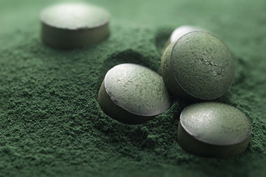 Spiruline - DIY - Une recette de pâtée vitaminée pour la journée mondiale des animaux !