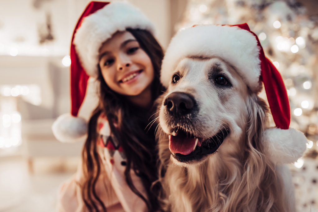 Christmas dog - On adore - Les animaux à l'honneur pour Noël !