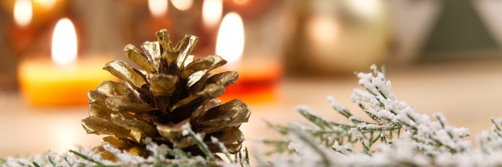 Foir'Fouille pomme de pin - On adore - Intégrer des pommes de pin à son Noël nature