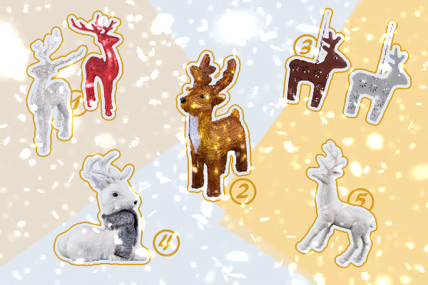 On adore - PM - Les animaux à l'honneur pour Noël !