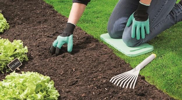 On adore : Ces outils de jardinage pratiques auxquels on ne pense pas forcément !