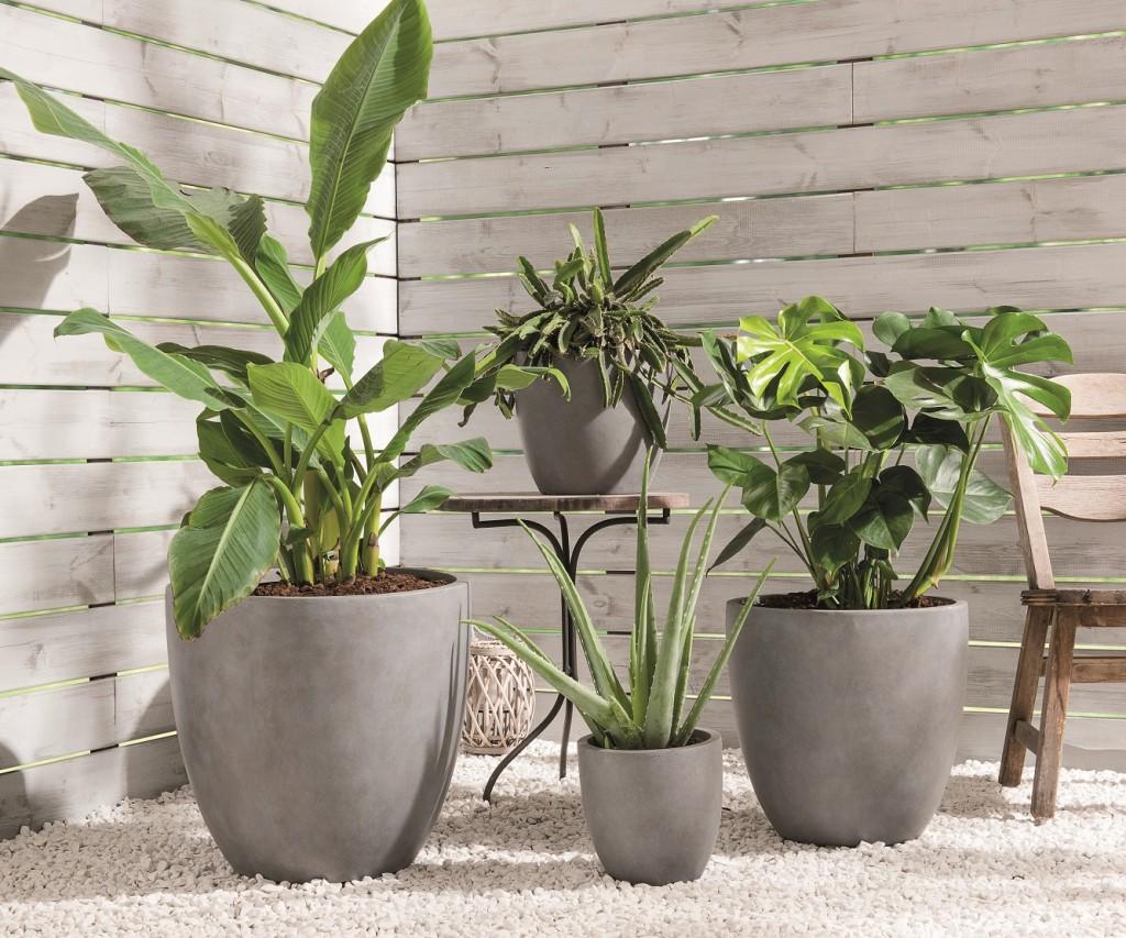 pots en fibre d_argile - on adore - ces outils de jardinage pratiques auxquels on ne pense pas forcement