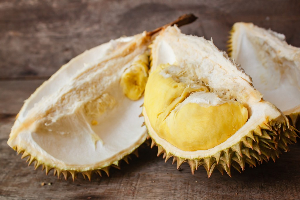 durian - fruit meconnu en france - foirfouille - potager nouveau