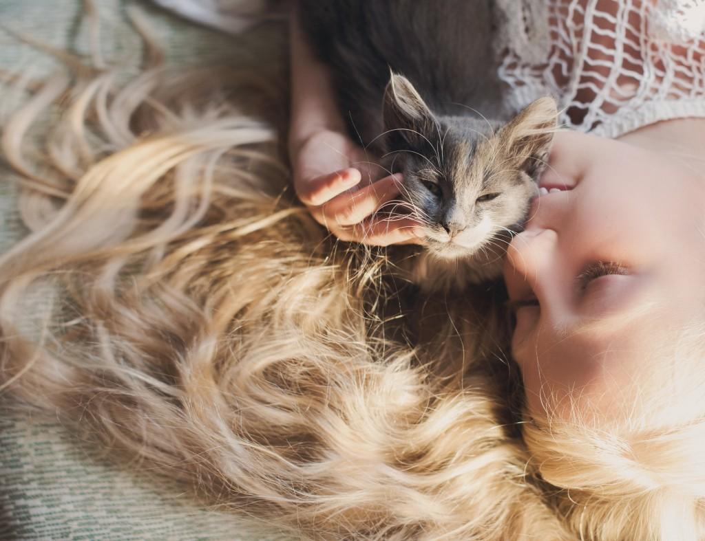 Caresser son chat avec amour