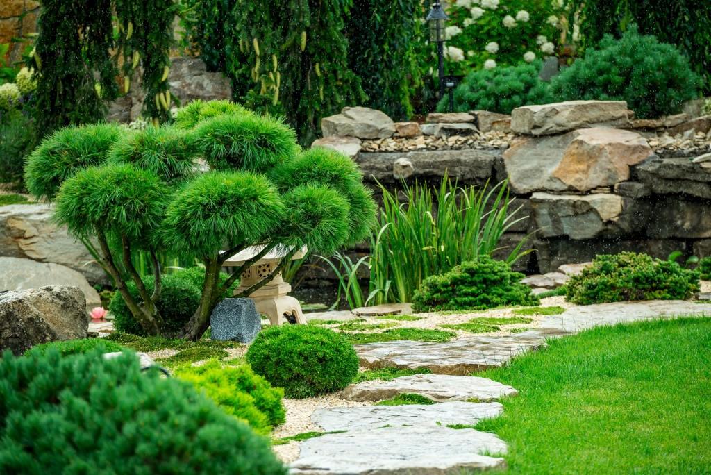 pas japonais jardin zen