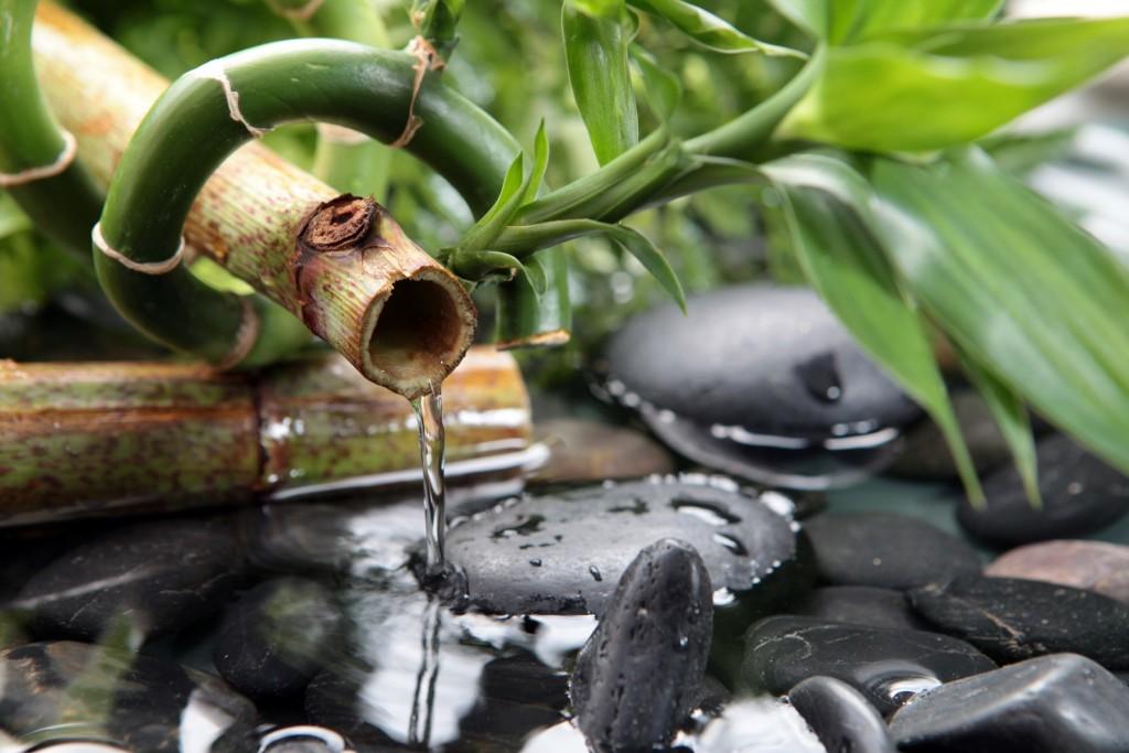 jardin japonais fontaine et galets