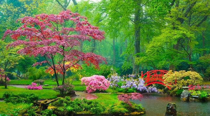jardin japonais harmonie nature